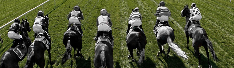 horseracing2